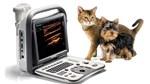 Современные модели ветеринарных сканеров УЗИ