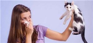 Почему возникает аллергия на животных?