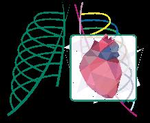 """IV Международный конгресс и Школа для врачей """"Кардиоторакальная радиология"""""""