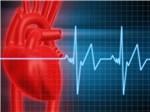 Яд, спасающий сердце: Новосибирские ученые придумали новое лекарство