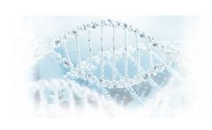 лечение болезни Паркинсона методом клеточной терапии